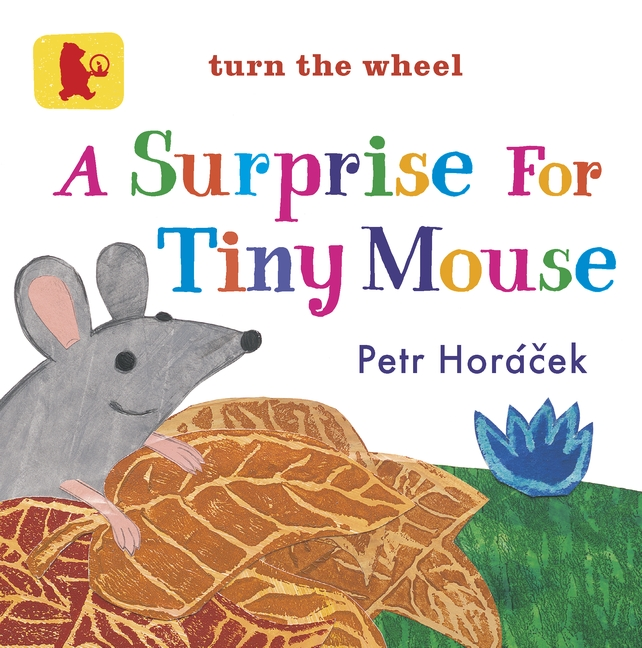 A Surprise for Tiny Mouse