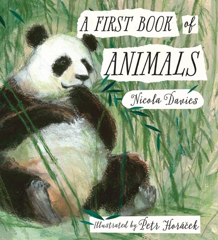 A First Book of Animals Petr Horáček a Nicola Davies