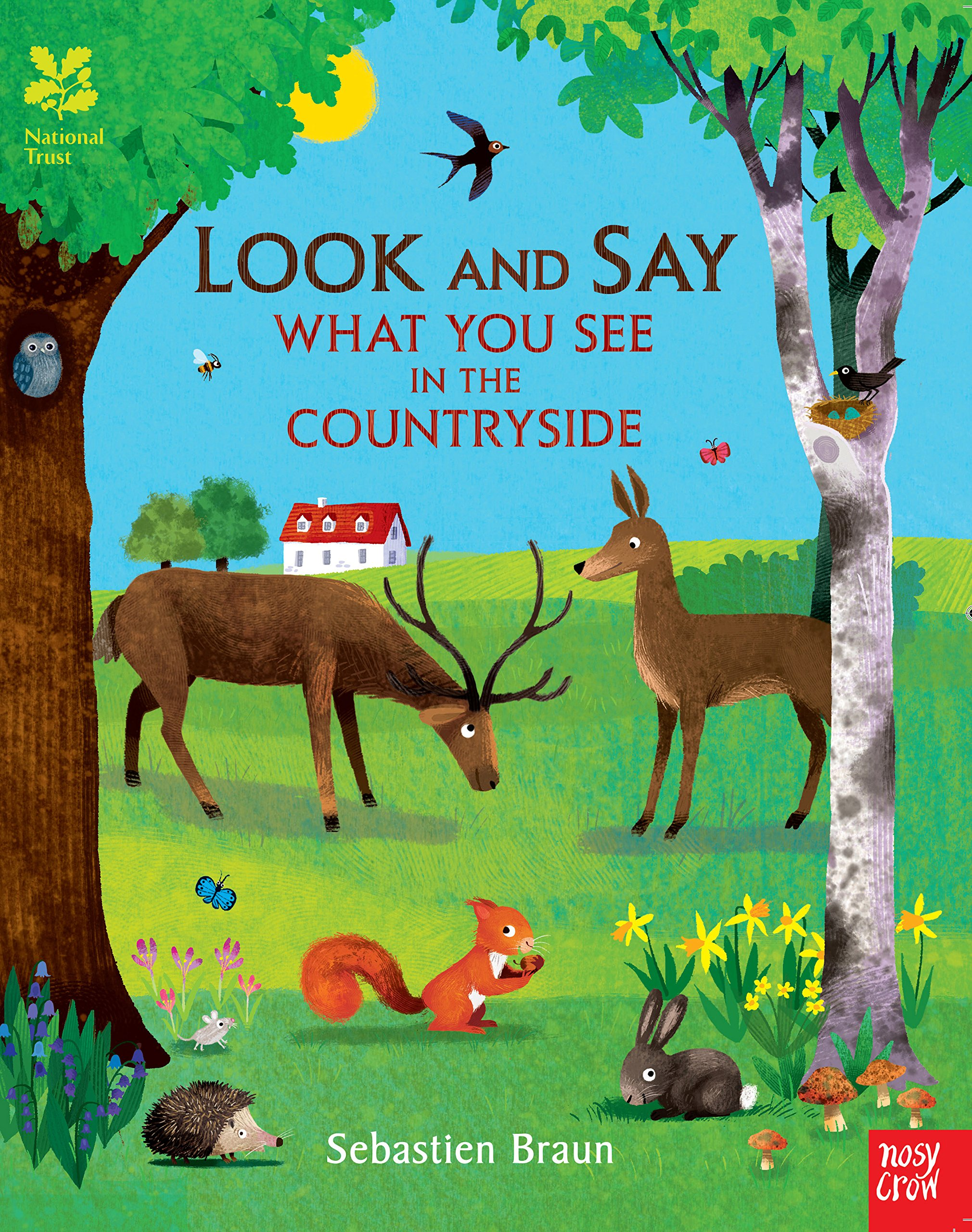 Look and Say What You See in the Countryside